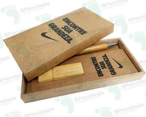 Kit Ecológico com caneta e pen drive