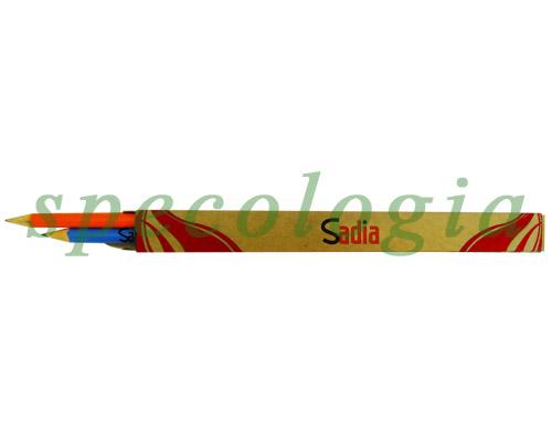 Lápis reflorestamento 2 unidades