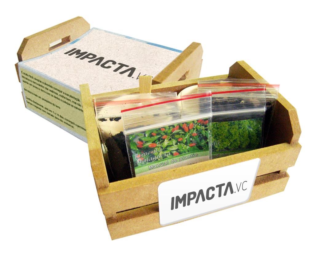 Mini Kit Horta
